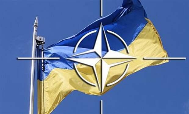 НАТО проведет экстренную встречу по ситуации в Украине