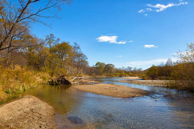 Приморский край, национальный парк «Земля леопарда», река