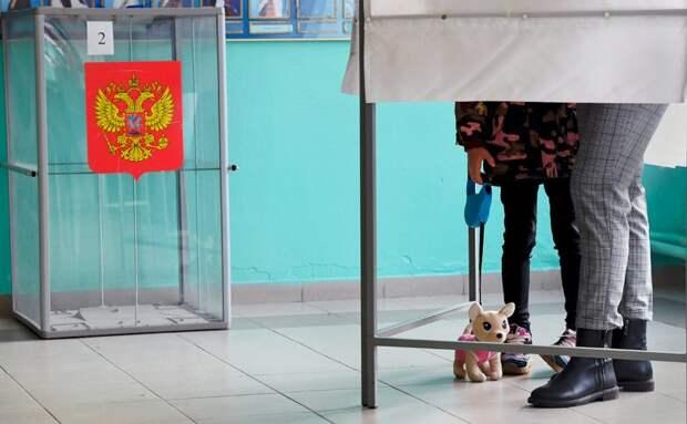 ЦИК подвела предварительные итоги выборов