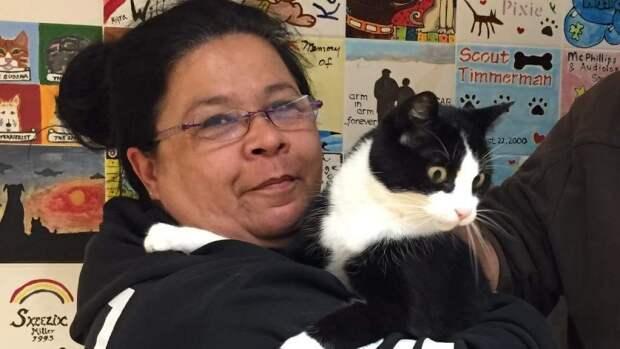 В Канаде пропавший кот нашелся через двенадцать лет