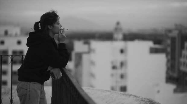 Байопик о дочери Маркса и жрицы любви: 10 фильмов ММКФ о женщинах