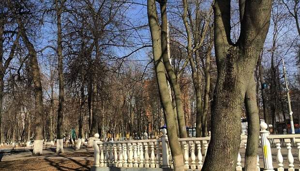 Парки Подольска временно закрыли из‑за коронавируса