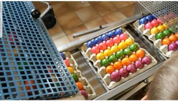 Как в Германии красят яйца