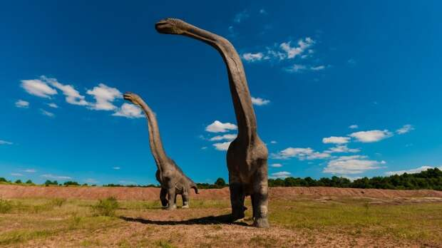 Археологи открыли неизвестный вид динозавров в пустыне Монголии