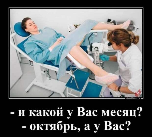 5402287_zabavatutza64214051910202013 (633x568, 36Kb)