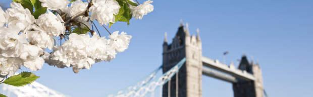 Лондон по карману: местный житель советует, как сэкономить в британской столице