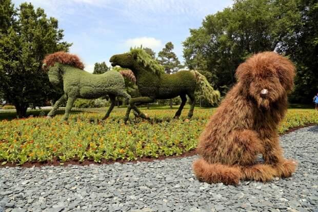 Удивительные цветочные скульптуры