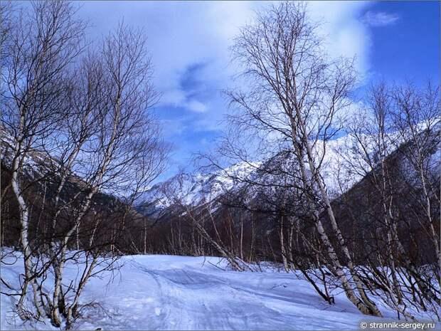 Баксанское ущелье снег березы снежная лавина