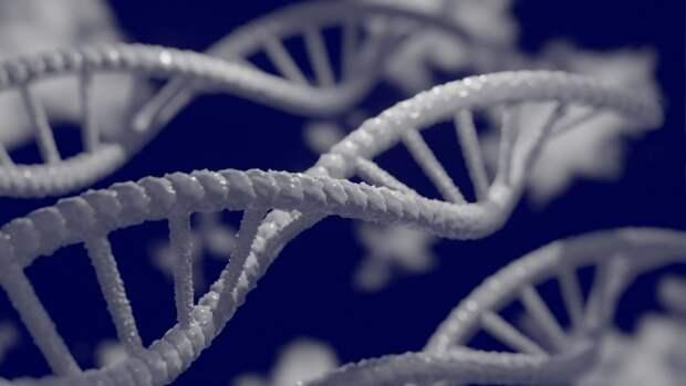 Международный коллектив ученых раскрыл реальное происхождение этрусков