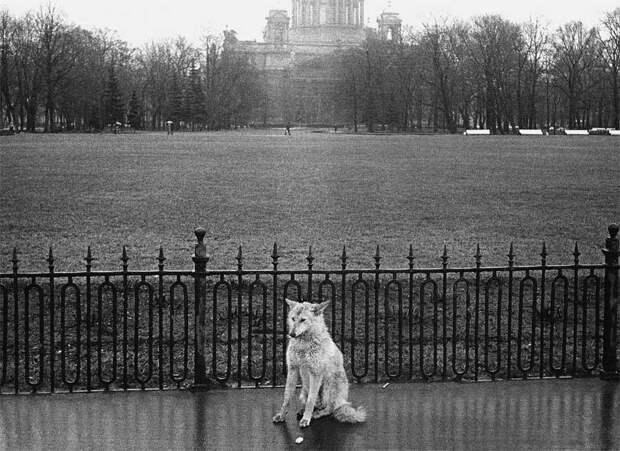Фотограф Евгений Канаев: «Казань и казанцы в 90-е» 54