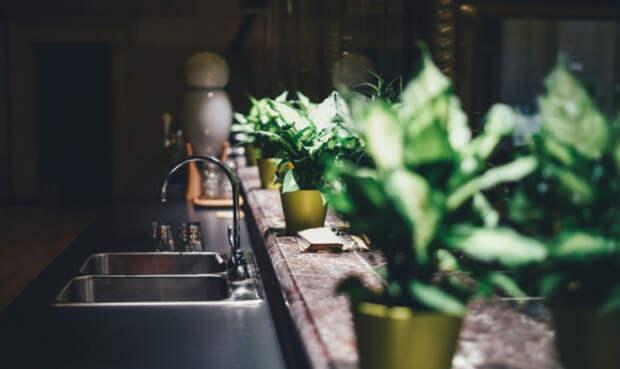 Микробиолог назвал самое грязное место в квартире