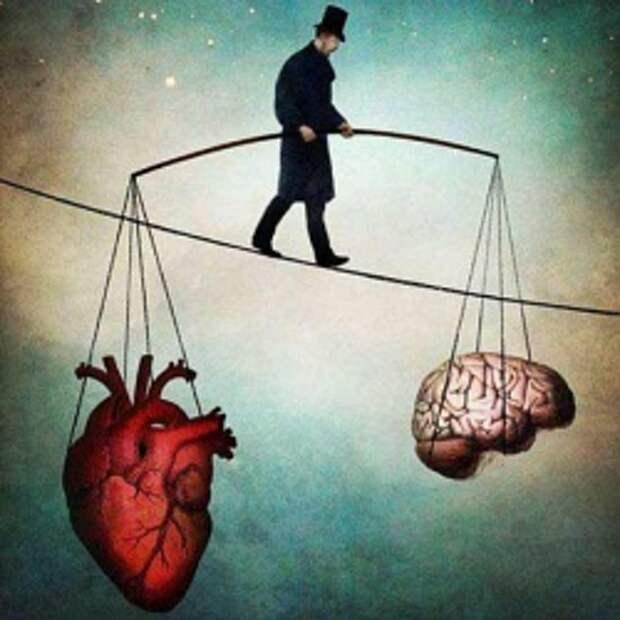 Любовь – это не все, что тебе надо: почему мы переоцениваем это чувство