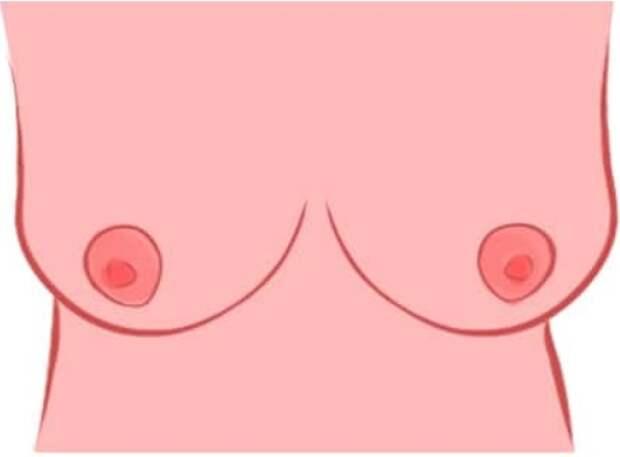 Какая у девушки грудь - такой и будет с ней жизнь! Какой номер у вашей?