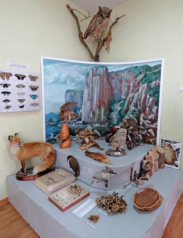 Вулканы, медведи, ипритка. Чем привлекательна и чем смертельно опасна природа Курил?
