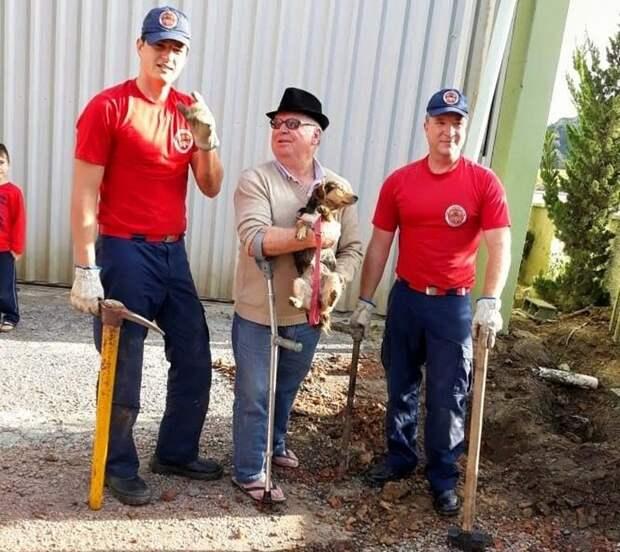 Спасение собаки, которая на пять дней застряла в сливной трубе