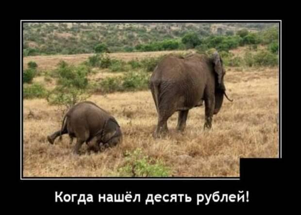 5402287_zabavatutza6401805191020204 (633x453, 31Kb)