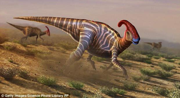 10 удивительных фактов, которые навсегда изменят ваши представления о динозаврах