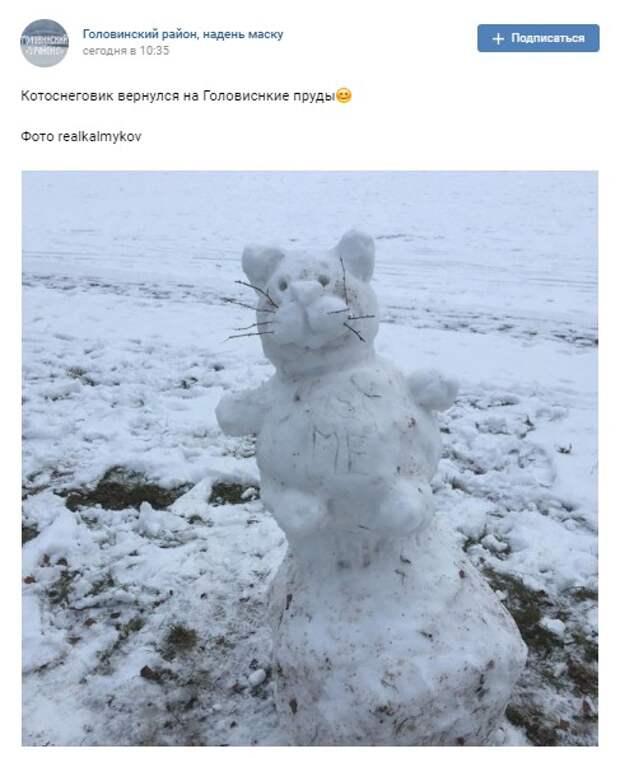 Фото дня: кото-снеговик возвращается