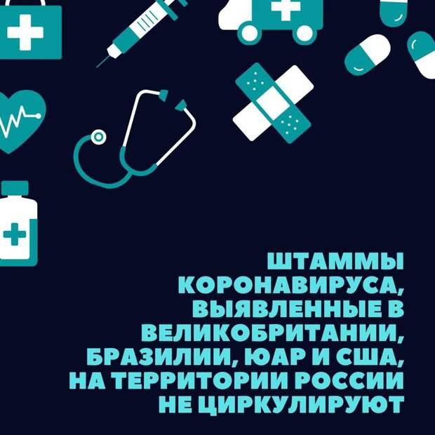 Возможно, это изображение (текст «+ + штаммы коронавируса, выявленныев великобритании, бразилии, юар и сша, на территории россии не циркулируют»)