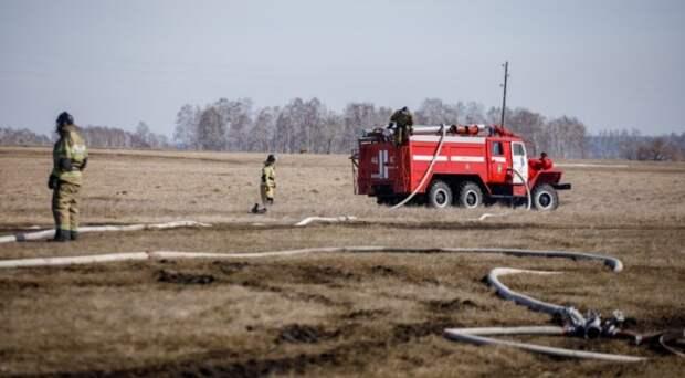 Более ста человек в Новосибирской области привлекли к ответственности за поджег сухой травы
