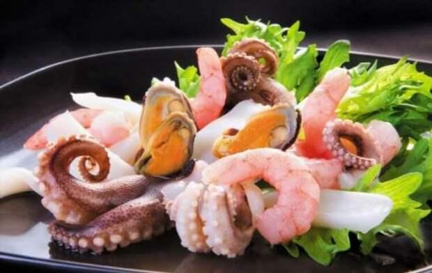 Почему человечеству нужно отказаться от поедания рыбы и перейти на медуз? (6 фото)
