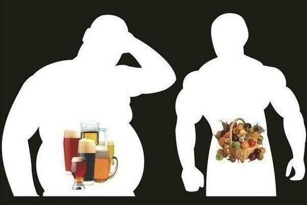 Время переваривания пищи, изображение №1