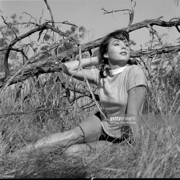 Красотка из 50-ых Кэрол Моррис