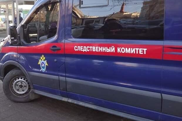 Жительница Красноярска поставила ребенка на колени для извинений перед ее сыном