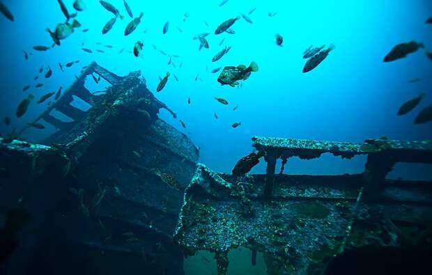 В Белом море нашли шесть затонувших кораблей времен Первой мировой войны