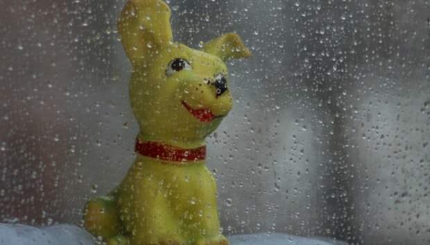 Кратковременный дождь и до плюс 16 градусов ожидается в Подольске во вторник