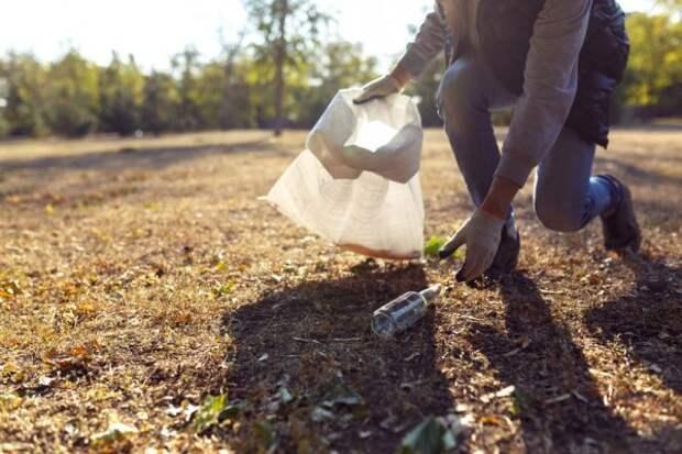 Как вице-губернатор Севастополя, полицейские и граждане убирали мусор