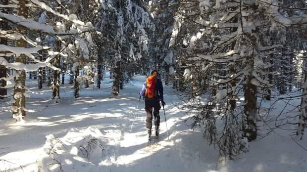 Лыжные гонки в «Парке Яуза» переносятся
