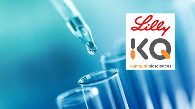 Lilly и Kumquat Biosciences займутся разработкой лекарств от рака