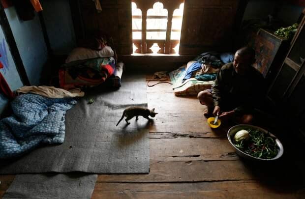 Дом в Бутане