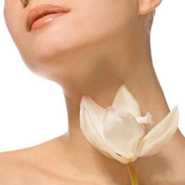 Перезапуск функциональности щитовидной железы и сжигание жира