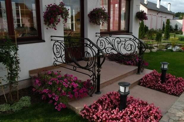 красивые клумбы во дворе частного дома
