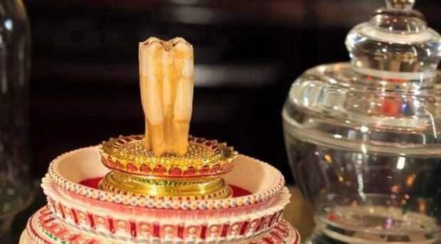 Гигантский зуб Будды Шакьямуни