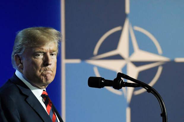 Байден: из-за Трампа НАТО может не стать через 4-5 лет