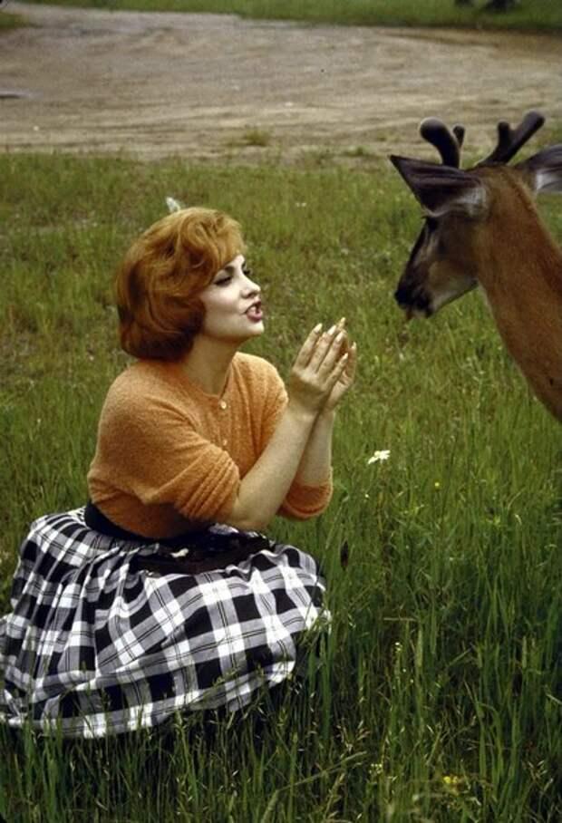 Джина Лоллобриджида. Отдых в Канадском лесу.