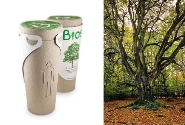 Например набирают популярность биоурны с семенами дерева - сажаете ее и растите дерево вашего ушедшего близкого человека