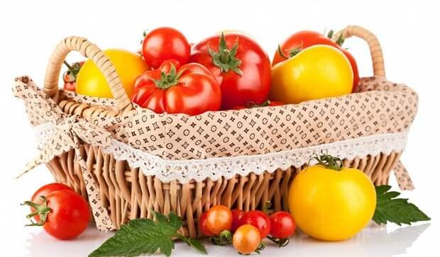 Томаты: умножаем урожай