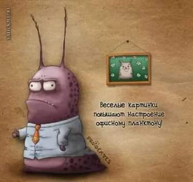 Неадекватный юмор из социальных сетей. Подборка chert-poberi-umor-chert-poberi-umor-05300504012021-16 картинка chert-poberi-umor-05300504012021-16