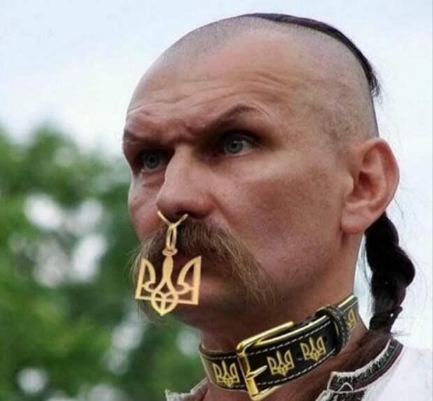 Украинское пособие «на случай войны с Россией»
