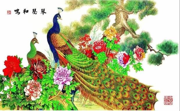 Павлины в китайской живописи