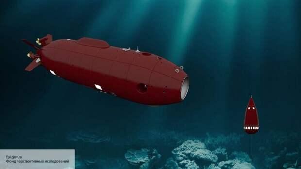 В РФ показали, на что способен российский подводный беспилотник «Витязь»