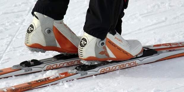 Юных лыжников, которых «выгоняет» Спасо-Парголовский храм, не оставят без крыши над головой