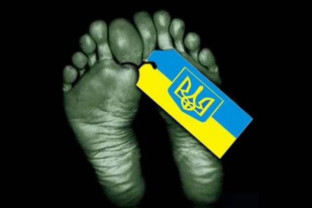 Украина вымирает катастрофическими темпами