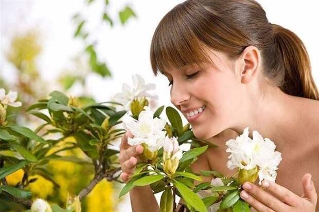 Какие запахи улучшают настроение.