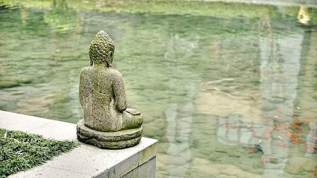 Пенсионеры из Лианозова отправятся в онлайн-путешествие по Китаю