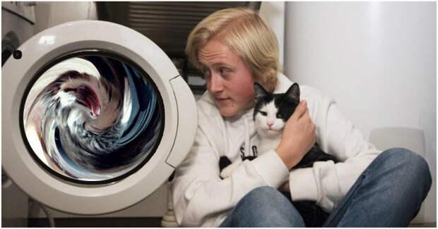 Просто ШОК! Кот из Норвегии выжил после 40-минутной пытки в стиральной машине! Смотрите, что с ним случилось…